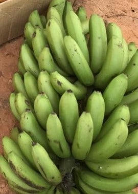 Bananen_Eier_Simbabwe_2019_